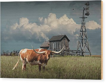 Longhorn Steer In A Prairie Pasture By Windmill And Old Gray Wooden Barn Wood Print by Randall Nyhof