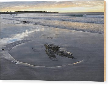 Longsands Rock 2 Wood Print by Catherine Easton