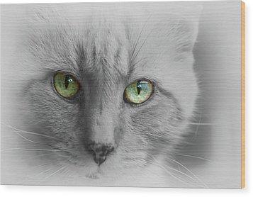 Look Into My Eyes  Wood Print