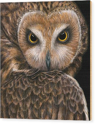 Look Into My Eyes Wood Print by Pat Erickson