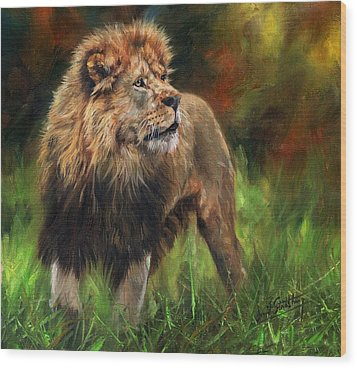 Wood Print featuring the painting Look Of The Lion by David Stribbling