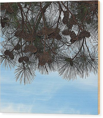Wood Print featuring the photograph Look Up- Fine Art by KayeCee Spain