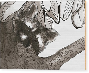 Looking Down Wood Print by Meagan  Visser