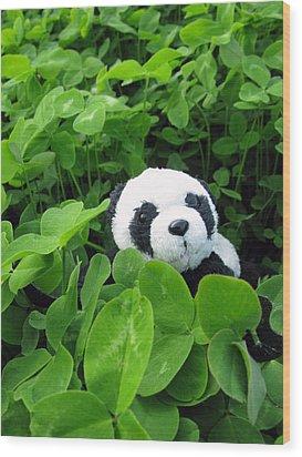 Wood Print featuring the photograph Looking For A Lucky Clover by Ausra Huntington nee Paulauskaite