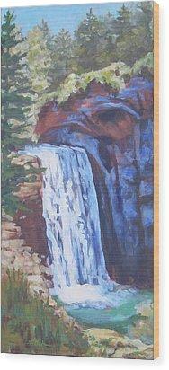 Looking Glass Falls Wood Print by Carol Strickland