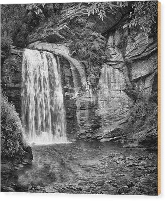 Looking Glass Falls Wood Print by Howard Salmon