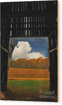 Looking Out Wood Print by Lois Bryan