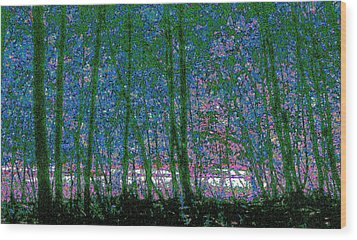 Wood Print featuring the photograph Looking Through The Trees by Lyle Crump