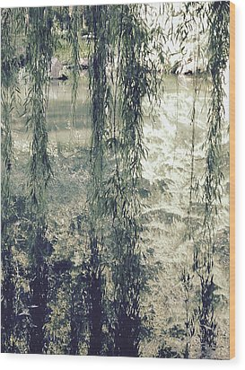 Looking Through The Willow Branches Wood Print by Linda Geiger