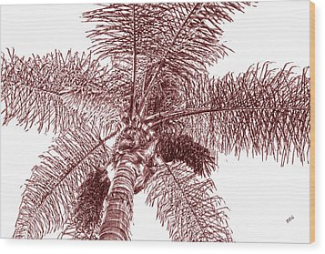 Looking Up At Palm Tree Red Wood Print by Ben and Raisa Gertsberg