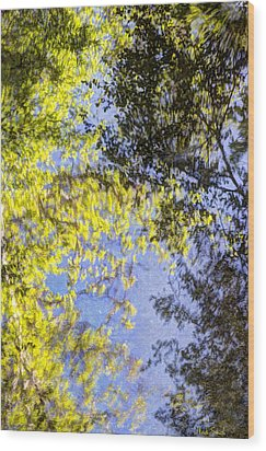 Wood Print featuring the photograph Looking Up Or Down by Heidi Smith