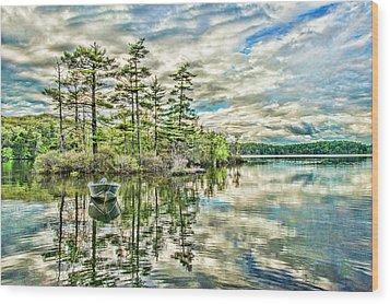 Loon Island Wood Print by Daniel Hebard