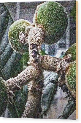 Loquat Man Photo Wood Print by Gina O'Brien