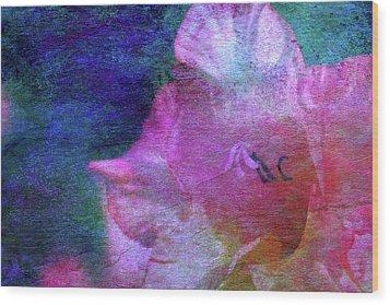 Lost Gladiolus Blossom 3018 L_2 Wood Print
