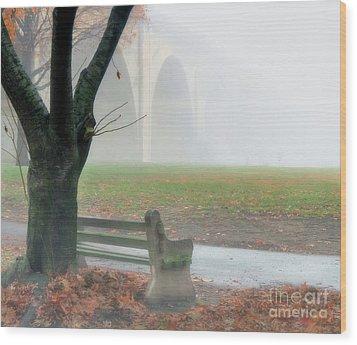 Lost In A Fog Wood Print