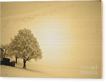 Wood Print featuring the photograph Lost In Snow - Winter In Switzerland by Susanne Van Hulst