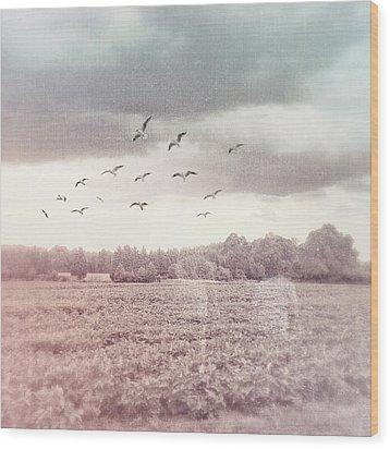 Lost In The Fields Of Time Wood Print