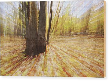 Lost In Time Wood Print by Mircea Costina Photography