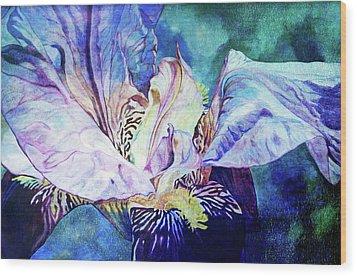 Lost Iris Passion 93 L_2 Wood Print