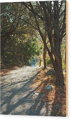 Wood Print featuring the photograph Lost Maples State Park Path 4 by Karen Musick