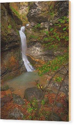 Lost Valley Falls Wood Print by Ryan Heffron
