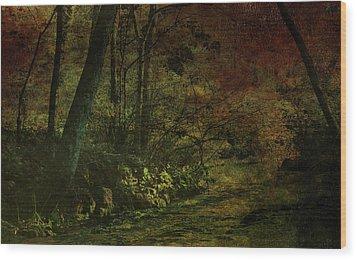 Lost Woods 8140 H_3 Wood Print