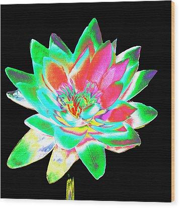Lotus 4 Wood Print by Ann Tracy