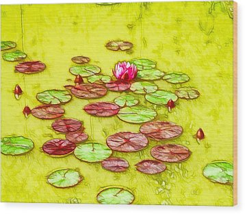 Lotus Flower On The Water 2 Wood Print by Lanjee Chee