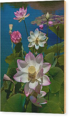 Lotus Pool Wood Print