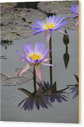 Wood Print featuring the photograph Lotus Reflection 4 by David Dunham
