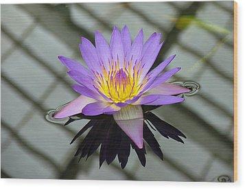 Lotus Wood Print by Vari Buendia