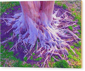 Wood Print featuring the photograph Louisiana Plantation Roots by Angela Annas