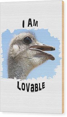 Lovable Wood Print by Judi Saunders
