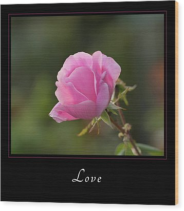 Wood Print featuring the photograph Love 2 by Mary Jo Allen