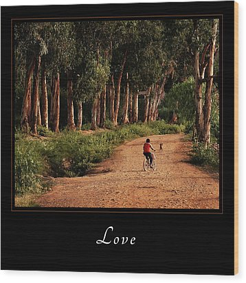 Wood Print featuring the photograph Love 3 by Mary Jo Allen