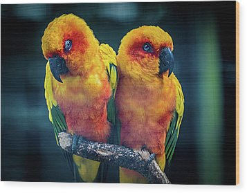 Wood Print featuring the photograph Love Birds by Chris Lord