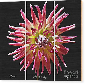 Wood Print featuring the photograph Love Generosity Hope by Diane E Berry