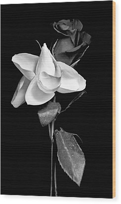 Wood Print featuring the photograph Love In Bloom by Elsa Marie Santoro