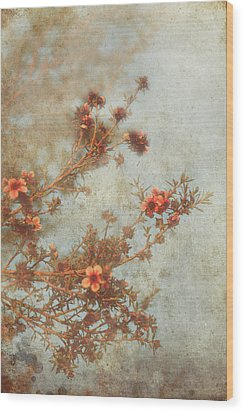 Love Is In Bloom Wood Print by Laurie Search