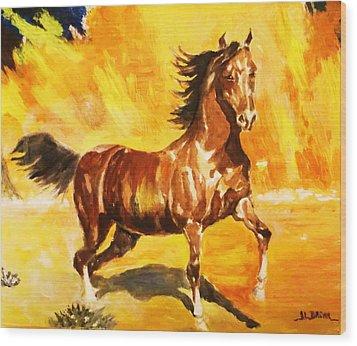 Lone Mustang Wood Print by Al Brown