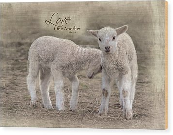 Wood Print featuring the photograph Love One Another by Robin-Lee Vieira