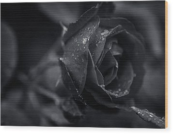 Sweet Love Roses And Water Wood Print