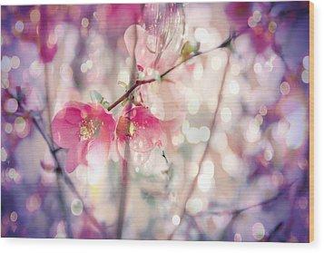 Love Song Wood Print by Toni Hopper