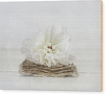 Wood Print featuring the photograph Love Story by Kim Hojnacki