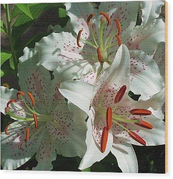 Lovely Lilies Wood Print by Anna Villarreal Garbis