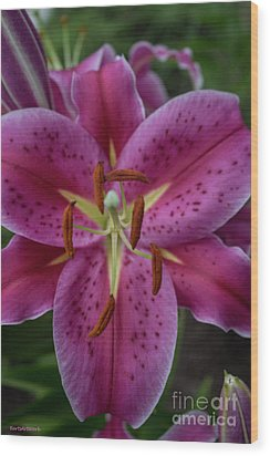 Lovely Lily Wood Print by Roberta Byram