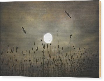 Lovers Moon Wood Print by Tom York Images