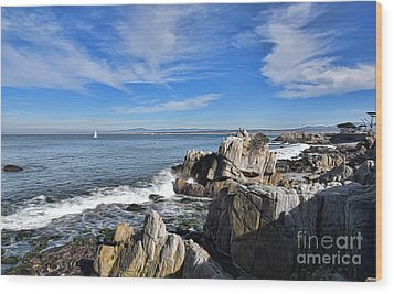 Lovers Point Park Wood Print by Gina Savage