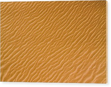 Low Rippling Dunes In The Northern Wood Print by Michael Fay