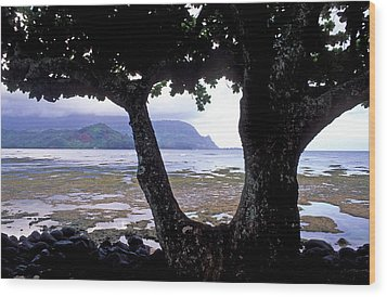 Low Tide And The Tree Wood Print by Kathy Yates